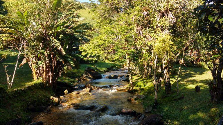 truta-da-floresta-chale-1 (1)