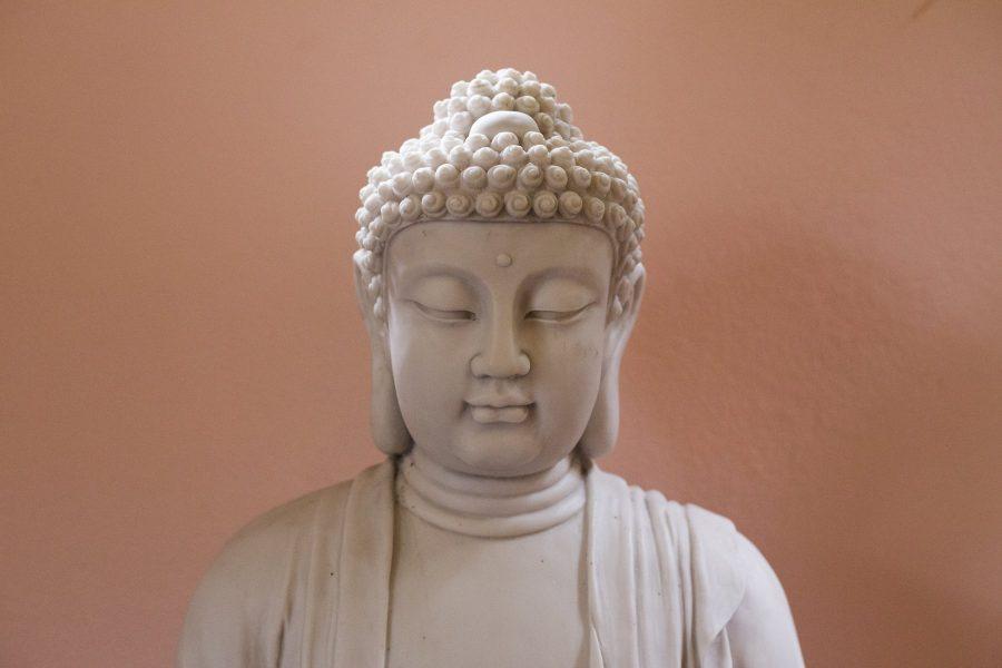 amo-visconde-de-maua-flavia-arouca-yoga-reiki-em-alta (8)