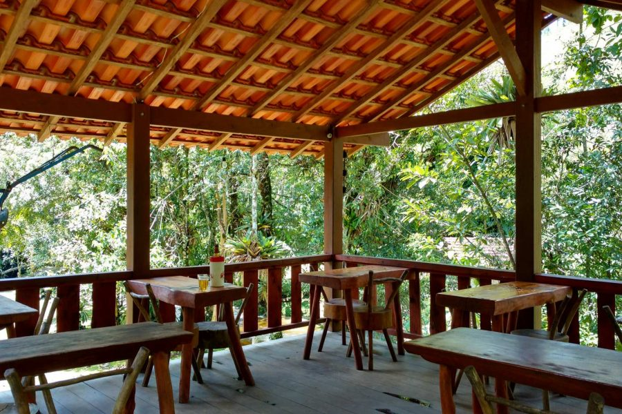truta-da-floresta-restaurante-local (47)